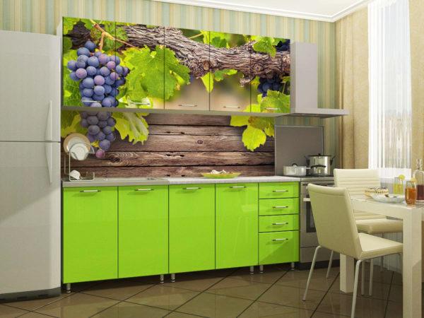 Кухня с фотопечатью, на фасаде, глянец — Вариант № 17